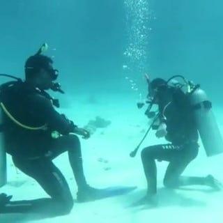Seagate-Hurghada-Duiken-Veilig