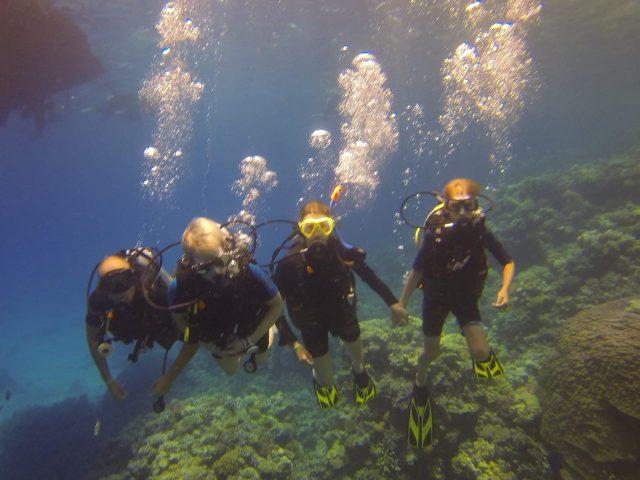 Wat is de beste periode en tijd om te duiken in Hurghada in de Rode Zee in Egypte?