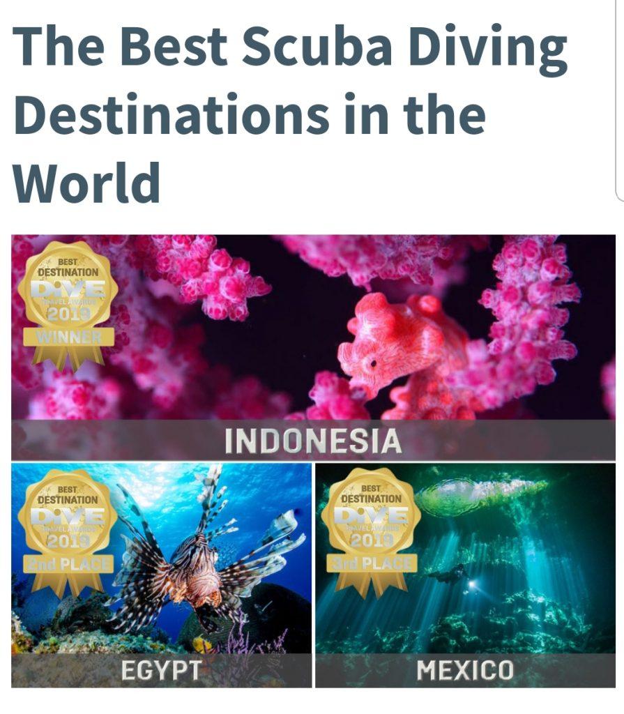 Duiken Hurghada Rode Zee Egypte Beste Duikbestemming ter wereld